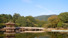 Park Nara we wrześniu 2008 roku (Feri88/Wikipedia (CC BY 3.0))
